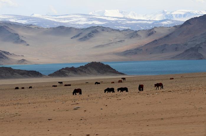 Moğolistan Görülmesi Gerekilen Yerler